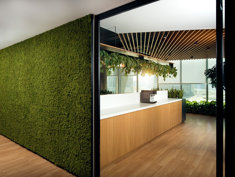 office fit out in Dubai with a green wall