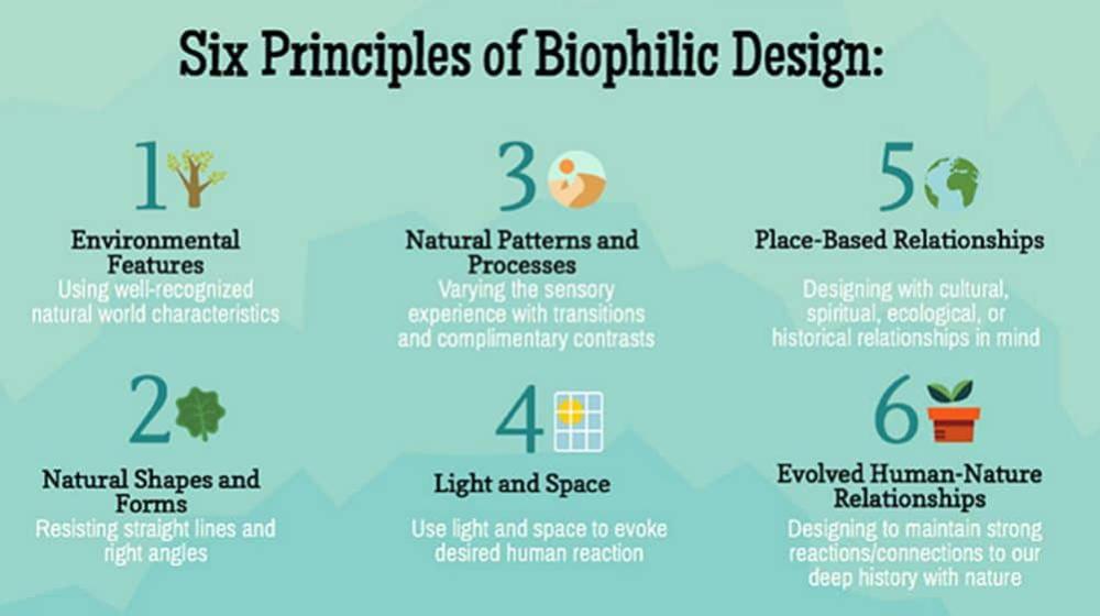 Biophilic Design Principles Infographic