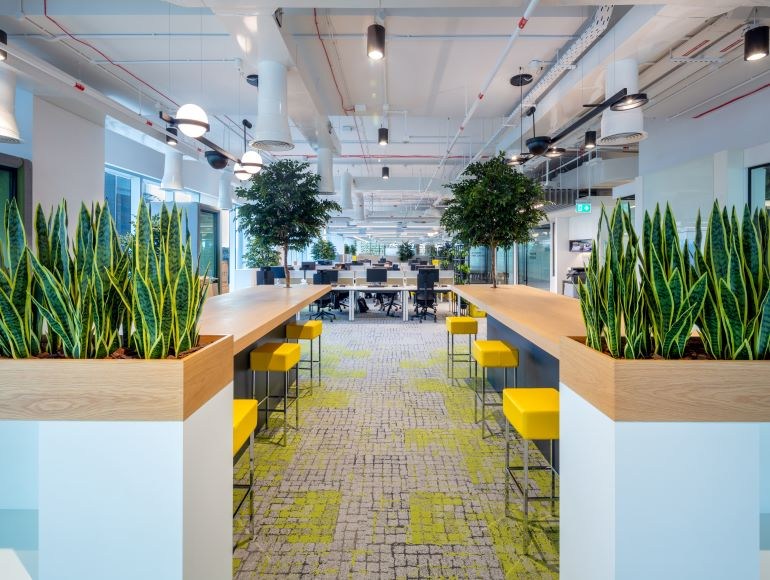 Office Interior Fit Out with Plants